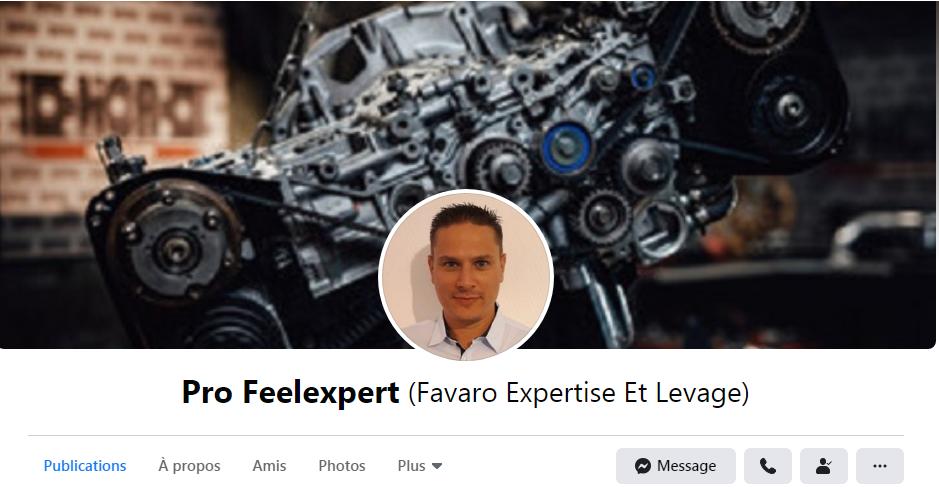 Facebook-Profeelexpert.png